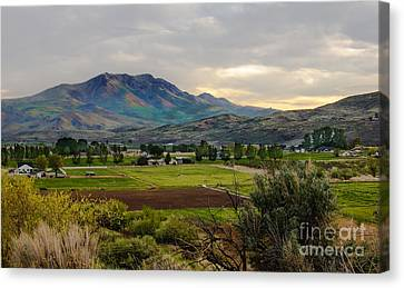 Spring Time In The Valley Canvas Print by Robert Bales