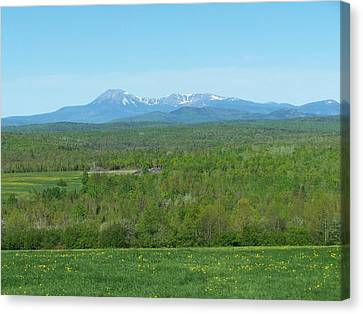 Canvas Print featuring the photograph Spring Time Katahdin by Gene Cyr