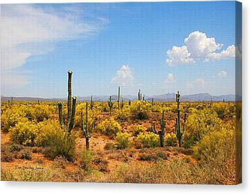 Canvas Print featuring the digital art Spring Time On The Rolls. by Tom Janca