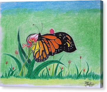 Spring Canvas Print by Tony Clark