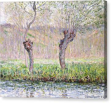 Spring Willows Canvas Print by Claude Monet
