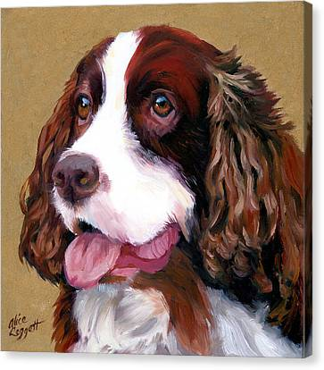 Springer Spaniel Dog Canvas Print