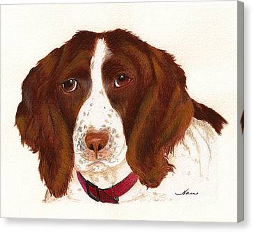Canvas Print featuring the painting Springer Spaniel  by Nan Wright