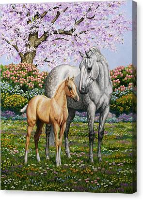 Grey Horse Canvas Print - Spring's Gift - Mare And Foal by Crista Forest