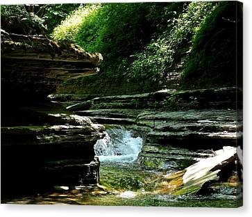 Canvas Print featuring the photograph Springs Of Living Water by Christian Mattison