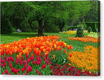 Springtime At Longwood Gardens Canvas Print by Dan Myers