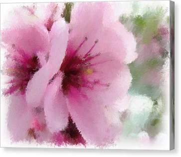 Springtime Beauty Canvas Print by Renee Skiba