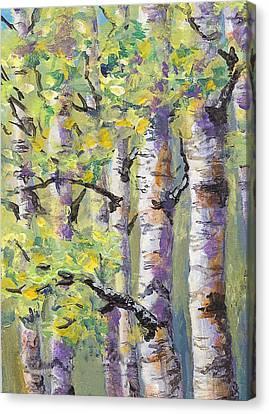 Springtime Birches Canvas Print by Karen Mattson