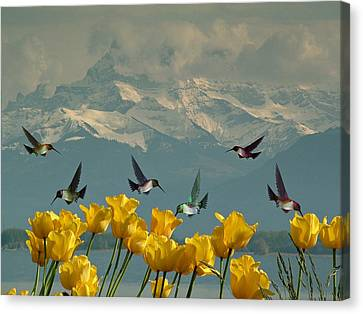 Cabin Wall Canvas Print - Springtime Humming Bird Lunch by Movie Poster Prints