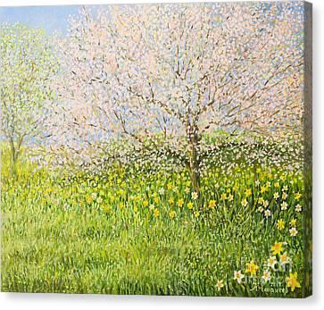 Springtime Impression Canvas Print by Kiril Stanchev
