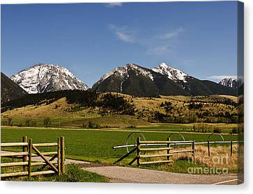 Canvas Print featuring the photograph Springtime In Montana by Sue Smith