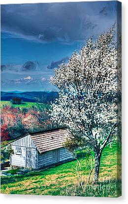 Springtime In The Blue Ridge Mountains II Canvas Print