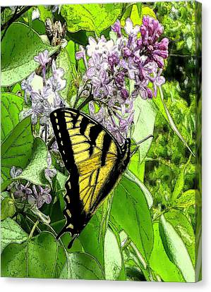 Canvas Print - Springtime Moments- The Butterfly And The Lilac  by Patricia Keller