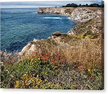 Springtime On The California Coast Canvas Print