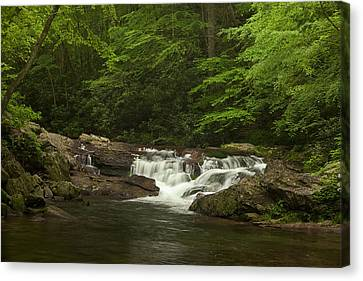 Springtime Rapids Canvas Print by Andrew Soundarajan