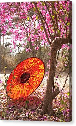 Springtime Umbrella Canvas Print