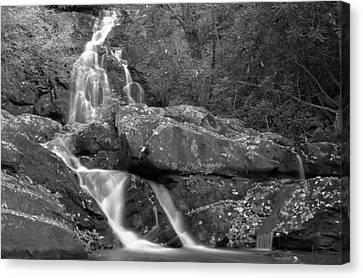Hidden Falls Canvas Print - Spruce Flats Falls by Dan Sproul