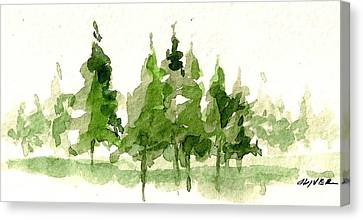Canvas Print featuring the mixed media Spruce Grove by Tim Oliver