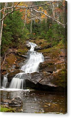 Spur Brook Cascade Canvas Print by Brett Pelletier
