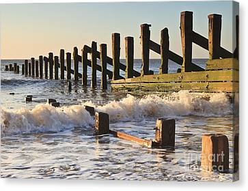 Spurn Point Sea Defence Posts Canvas Print by Colin and Linda McKie