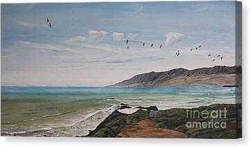Squadron Of Pelicans Central Califonia Canvas Print by Ian Donley