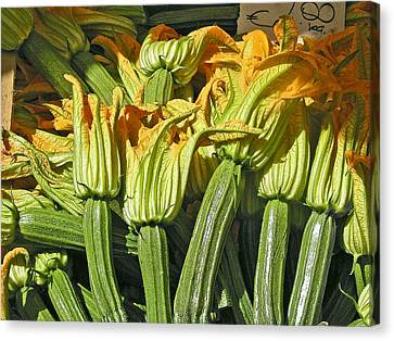 Squash Blossoms Canvas Print by Jean Hall