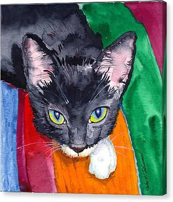 Squeak The Wonder Cat Canvas Print