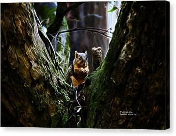 Squirrel 8309 - F Canvas Print by James Ahn