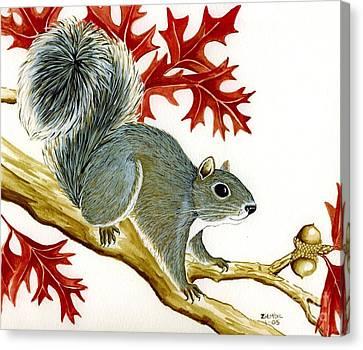 Squirrel Canvas Print by Lori Ziemba