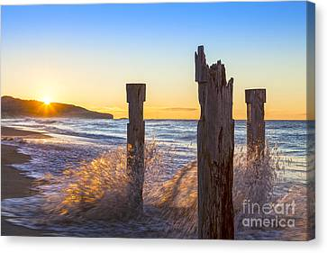 St Clair Beach Dunedin At Sunrise Canvas Print by Colin and Linda McKie