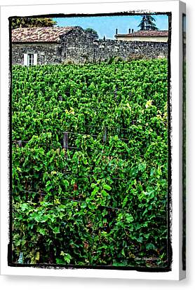 Canvas Print featuring the photograph St. Emilion Winery by Joan  Minchak