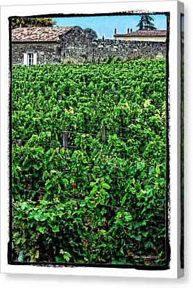St. Emilion Winery Canvas Print by Joan  Minchak