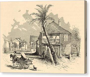 St. Francis Street In St. Augustine 1872 Engraving Canvas Print by Antique Engravings