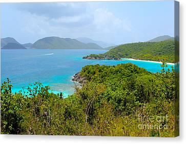 British Virgin Islands Canvas Print - St John Beaches by Carey Chen
