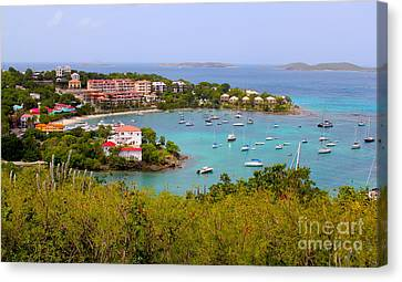 St John's View Canvas Print by Carey Chen