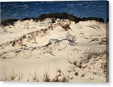 St. Joseph Sand Dunes Canvas Print by Adam Jewell
