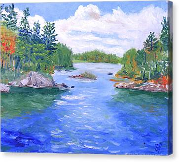 St Lawrence River-view From Waterson State Park Canvas Print by Robert P Hedden