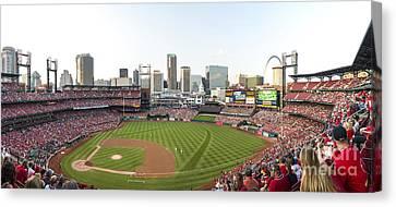St. Louis Cardinals Pano 1 Canvas Print by David Haskett