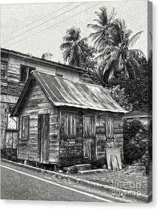 St Lucia - Old Shack Canvas Print by Gregory Dyer