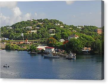 St Lucia Canvas Print by Willie Harper
