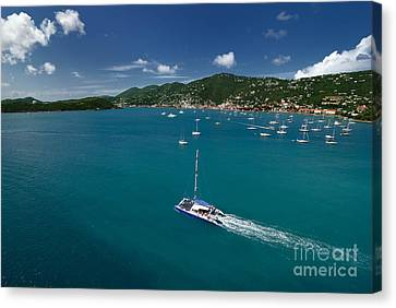 Virgin Canvas Print - St Thomas Usvi by Amy Cicconi