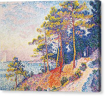 St Tropez The Custom's Path Canvas Print by Paul Signac