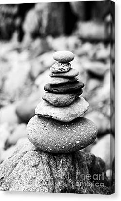 Stack Canvas Print by Anne Gilbert