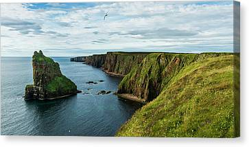 Stacks Of Duncansby And The Rugged Canvas Print