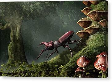 Forest Floor Canvas Print - Stag Beetle by Daniel Eskridge