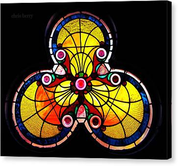 Stained Glass  Canvas Print by Chris Berry