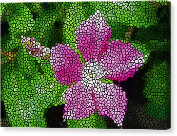Stained Glass Madagascar Periwinkle 2 Canvas Print by Lanjee Chee