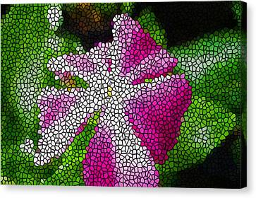 Stained Glass Madagascar Periwinkle 3 Canvas Print by Lanjee Chee