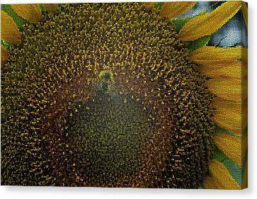 Stained Glass Sunflower Canvas Print