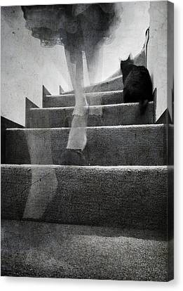 Stairs Canvas Print by Laura Melis